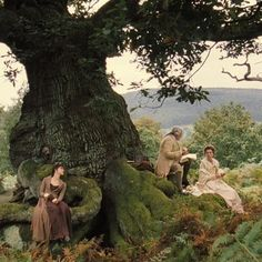 Sherwood forest 16 Gorgeous Locations From Pride And Prejudice You Can Actually Visit