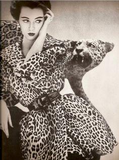 Dovima in a Bernham-Stein leopard fur coat, photo by Richard Avedon The vogue for leopard print started in the Richard Avedon, Der Leopard, Leopard Fur Coat, Leopard Jacket, Leopard Shoes, Leopard Fashion, Animal Print Fashion, Animal Prints, Leopard Prints