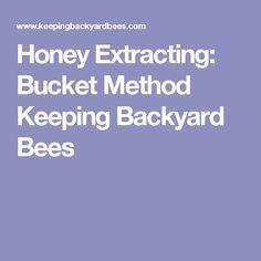 8 Proper Beehive Placement Tips Keeping Backyard Bees Different Bees, Savannah Bee Company, Types Of Honey, Bee Farm, Bee Happy, Winter Activities, Bee Keeping, Queen Bees, Backyard