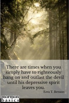 From the 2015 Relief Society - Priesthood Manual, Lesson 04 - Living Joyfully in Troubled Times.