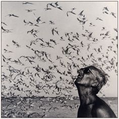 """Jacques Cousteau: """"The sea, once it casts its spell, holds one in its net of wonder forever."""""""