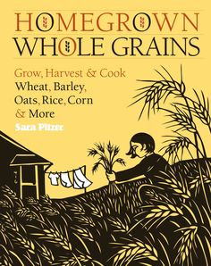 A backyard field of grains? Yes, absolutely! Wheat and corn are rapidly replacing grass in the yards of dedicated locavores across the country. For adventurous homeowners who want to get in on the mov