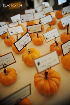 Fall Wedding ideas. Place cards on Pumkins. Photo by Invited Design Studios
