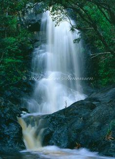 st john usvi waterfall | Reef Bay Waterfall, St John | Steve Simonsen ... | ST. John USVI