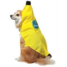 Cqb Dog Costume Medium