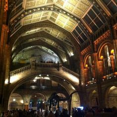 Twitter / oliver_rees: Natural history museum looks ...