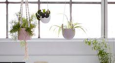 I've just found Hanging Plant Pot Or Vase. Hanging Plants, Potted Plants, Pastel, Bespoke Furniture, Open Plan Living, Plant Hanger, White Ceramics, Flower Pots, Planter Pots