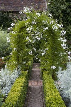 beautiful garden path with fabulous hedges and incredible archway!!!!!