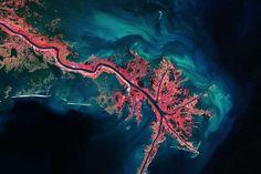 Weltraumfotografie: Vogelperspektive - Mississippi-Delta
