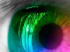 Para mostrar los diferentes tipos de ceguera al color, un equipo de la Clínica de comparación en el Reino Unido ha creado un conjunto de archivos GIF que comparan y contrastan las formas en que la discapacidad visual puede afectar la visión diaria