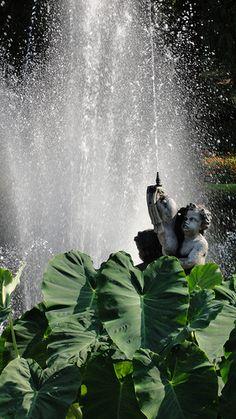 Lago Maggiore, giardino botanico di Villa Taranto