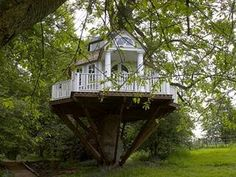 Tree Cubby House