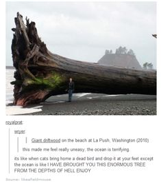 Enormous tree from the depths of Hell <---why did that sound like Thor's voice in my head?