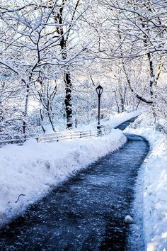 Snowy Path by AmalgamaPhoto
