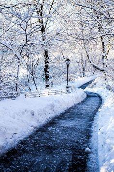 Spazieren gehen ist im Winter besonders toll! Wenn dann auch noch Schnee liegt, soweit das Auge reicht...
