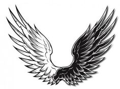 Vector Preto E Branco black and white vector wings black and white vector wings White Angel Wings, Black Wings, Wings Wallpaper, Devil Tattoo, Wings Drawing, Wing Tattoo Designs, Eagle Wings, Wings Design, Angel And Devil