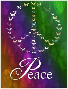 Wings Of Peace....