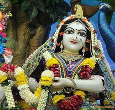 ISKCON Chowpatty Deity Darshan 30 Nov 2016