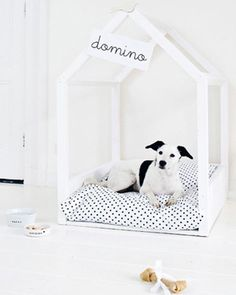 puppy place | DIY