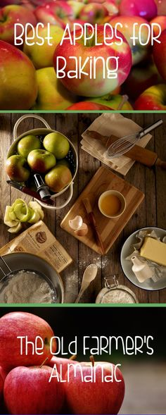 So many recipes, so many apples! Make the best apple choices with help from The Old Farmer's Almanac!