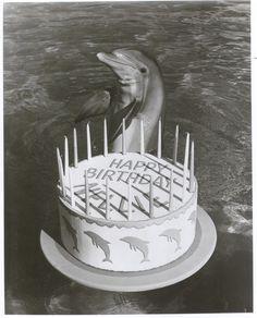 Nellie celebrates her 20th birthday!