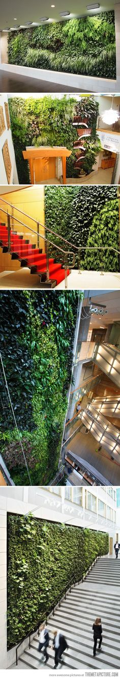 Like the vertical garden at the CaixaForum in Madrid