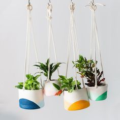 When space is tight, but you want to live in a jungle, hanging plants are the way to go. We put a modern spin on the macramé-style hanging planters and made these colorful rope planters. Each piece is made by hand and has slight variations. Available in four color combinations and two sizes. The sma