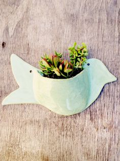 An Adorable Bird Wall Planter that would look lovely in your garden. It would happily hold your favorite little plants. This planter is hand built out of stoneware clay. I have glazed it in a beautiful color called Layered Fern. I Have also stamped it in a really pretty swirl handmade stamp.  I have included a picture of some of the colors that I have. If you would like a different color please note it upon checkout. This color in the picture, layered fern, is number 16.  Please note that…