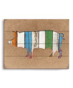 Look what I found on #zulily! Pig Texture Collage Wooden Wall Art by Image Canvas #zulilyfinds