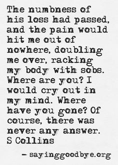 The numbness of his loss had passed and the pain would hit me out of nowhere, doubling me over, racking my body with sobs.  Where are you? I would cry out in my mind. Where have you gone? Of course, there was never any answer. - S Collins