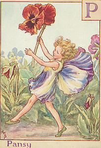 antique Pansy Flower Fairy print