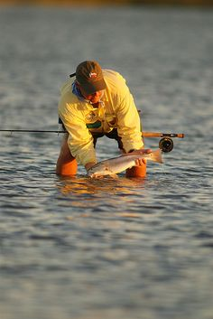 Catch and release