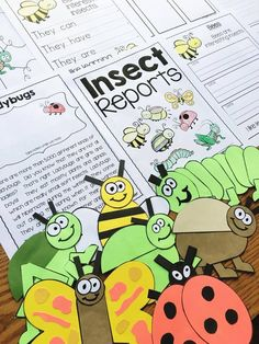 Insect Reports - clo