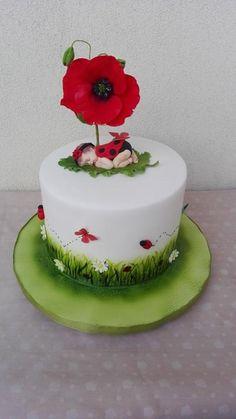 baby ladybird cake by Geri