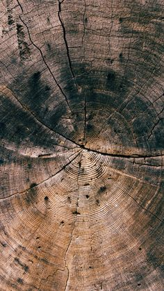 Nature Wood Line Texture Old Dark Pattern #iPhone #6 #plus#wallpaper