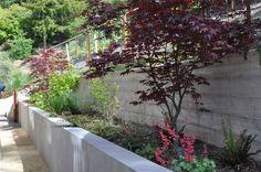Side Yard, Seat Wall Side Yards Huettl Landscape Architecture Walnut Creek, CA