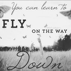 maddie and tae fly lyrics tattoo - Google Search