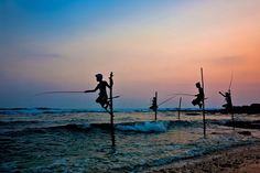 Stilt Fishing, Sri Lanka