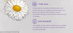 Chamomile tea used as a hair rinse will soothe an itchy scalp and beat dandruff
