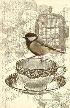 French Postcard image with Bird on Teacup Digital collage by jdayminis, $3.50