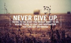 Never Give Up on Yourself - Positivity quote