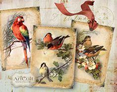 ***EPHEMERA BIRDS - Digital Collage Sheet Printable Gift tags ACEO scrapbooking paper images. $4.60,