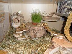 Mike (User Xingtao aus dem Hamsterforum ) hat diesen schönen Eigenbau für seinen Dsungarischen Zwerghamsters Mickey gebaut (Originalthread H...