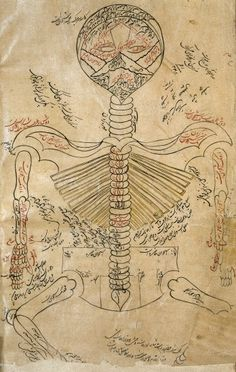 Skeleton system, Avicenna, Canon of Medicine by Ibn Sina, 1632. The Wellcome Library, CC-BY