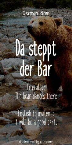 German Idioms: Da steppt der Bar. Literally: The bear dances there. English Equivalent: It will be a good party. A similar phrase to this is 'the burning air' with an identical meaning: Da brennt die Luft!