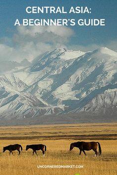 Advice on how to plan a trip to Central Asia to explore the Silk Road and countries like Turkmenistan, Uzbekistan, Kazakhstan, Kyrgyzstan, and Tajikistan.