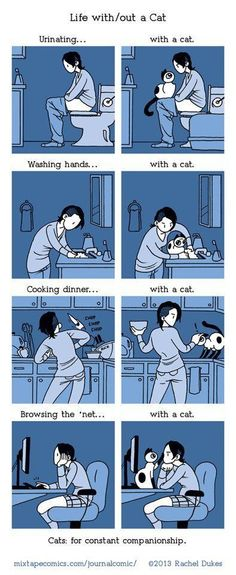 Life with a cat :) They just have to Supervise, every little thing. From sleep to shower to intimate things. The cat owns you and they don't care what Rights the Constitution says you have. You have only have what rights they give you, and it doesn't include privacy.