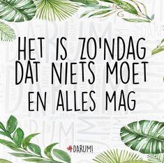 """Tuincentrum De Biezen 🌿 on Instagram: """"FIJNE ZONDAG......💕 Wij zijn vandaag open van 12.00-17.00 uur . #zondag #sunday #weekend #genieten #liefde #gezellig #love #happy #open…"""""""