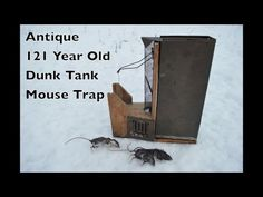Antique 121 Year Old Dunk Tank Mouse Trap In Action - Peerless Automatic Mouse Trap - YouTube