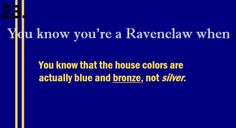 And that the house mascot is an eagle not a raven like how everyone claims.  Personally, I like the bronze and blue color scheme better than silver and blue.